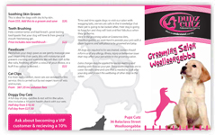 Brochure Sample 15