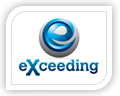 exceeding logo design