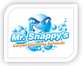 mr snappy's logo design